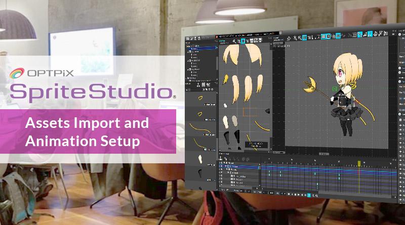 Assets Import and Animation Setup